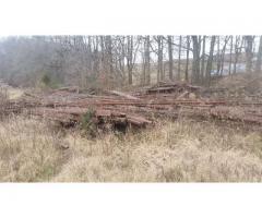 Steel Rail Road Tracks And Creosote Railroad Tie logs